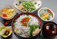 wakamiya-1.jpg
