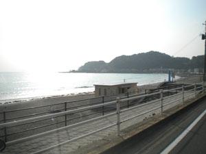 wakamiya-2.jpg